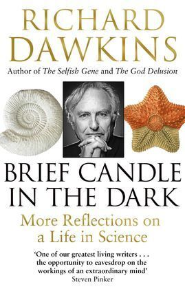 A BRIEF CANDLE IN THE DARK