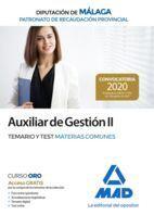 AUXILIAR DE GESTIÓN II DEL PATRONATO DE RECAUDACIÓN PROVINCIAL DE LA DIPUTACIÓN