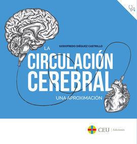 LA CIRCULACIÓN CEREBRAL.