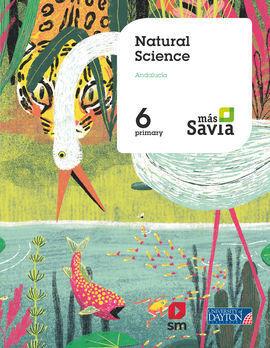 NATURAL SCIENCE. 6ºPRIMARIA