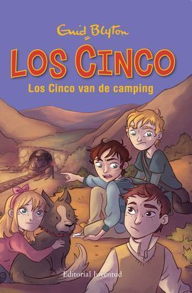 LOS CINCO VAN DE CAMPING
