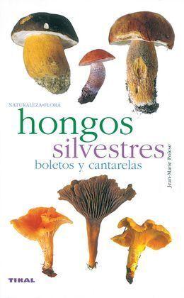 HONGOS SILVESTRES. BOLETOS Y CANTARELAS