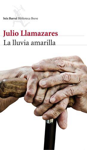 LA LLUVIA AMARILLA (+DVD)