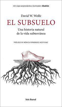 EL SUBSUELO