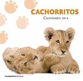 2014 CALENDARIO CACHORRITOS. CUPULA