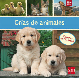 CRIAS DE ANIMALES