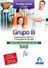 GRUPO B DEL SERVICIO ANDALUZ DE SALUD. TEMARIO COMÚN Y TEST 2014