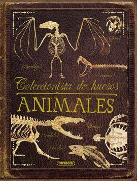 COLECCIONISTA DE HUESOS ANIMALES