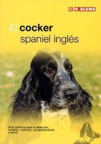 EL COCKER SPANIEL INGLÉS