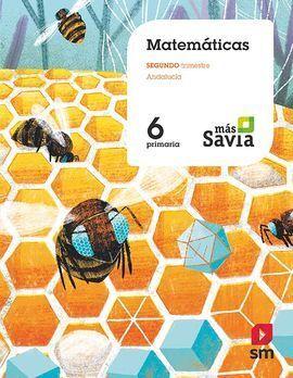 MATEMÁTICAS. 6 PRIMARIA.
