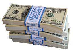 THE 10000 DOLLAR FLIP BOOK